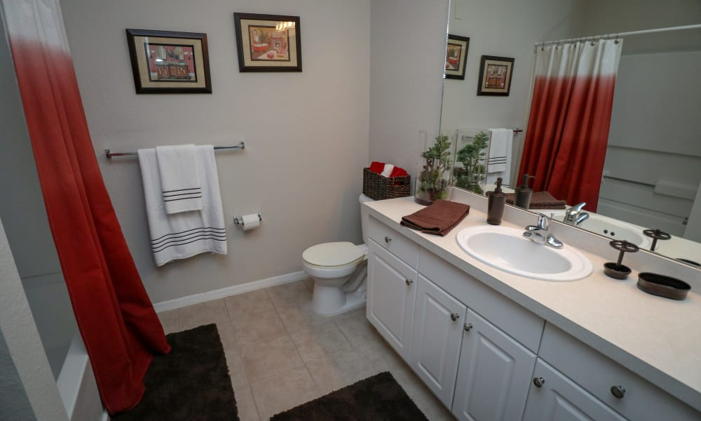 Master Bath at Palms at Wyndtree