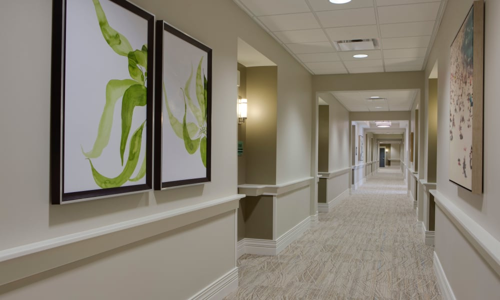 Art decorated wide hallways at Beach House Assisted Living & Memory Care at Wiregrass Ranch in Wesley Chapel, Florida
