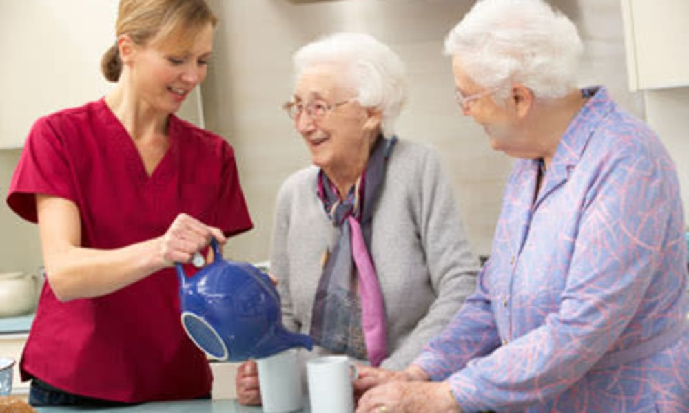 Residents having tea at Belle Reve Senior Living in Milford, Pennsylvania