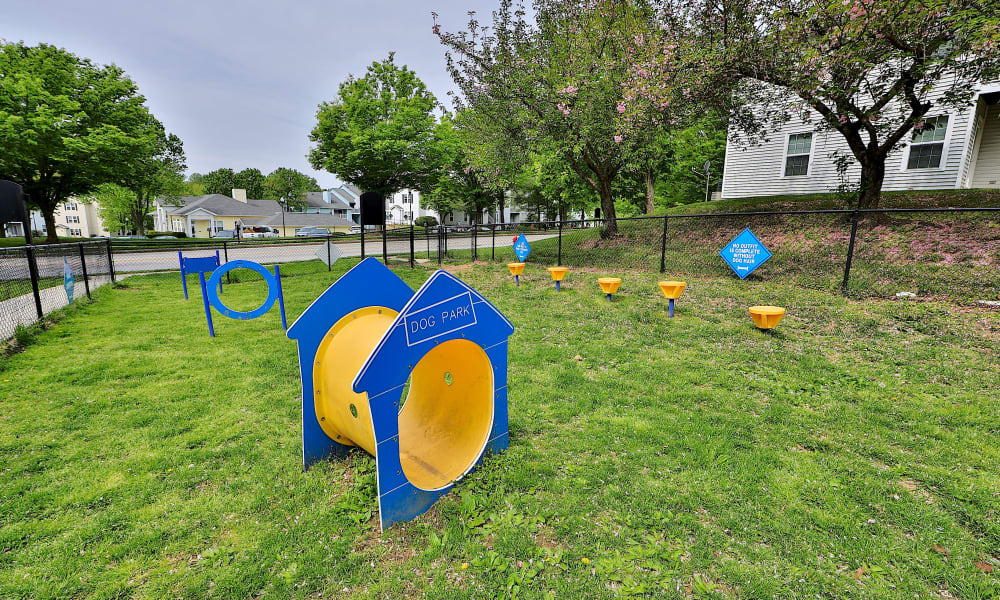 Dog Park at Chase Lea Apartment Homes in Owings Mills, Maryland