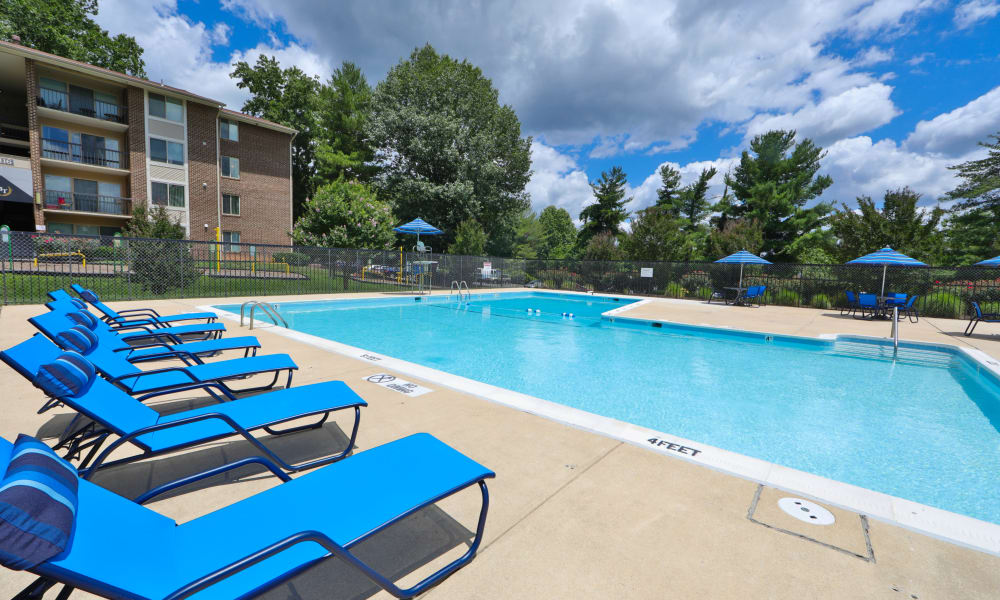 Swimming Pool at Montgomery Trace Apartment Homes in Silver Spring, MD