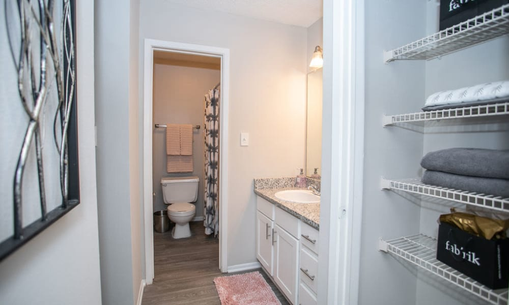 Bathroom at The Pointe at Preston Ridge in Alpharetta, Georgia