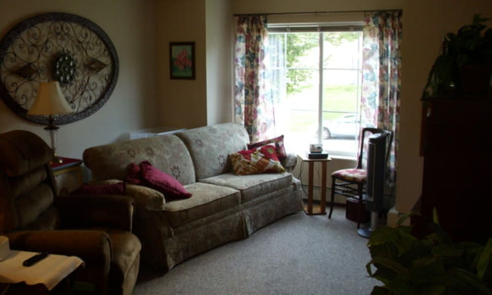 A living room with plush carpeting at Parkway Gardens Senior Apartment Community in Saint Paul, Minnesota