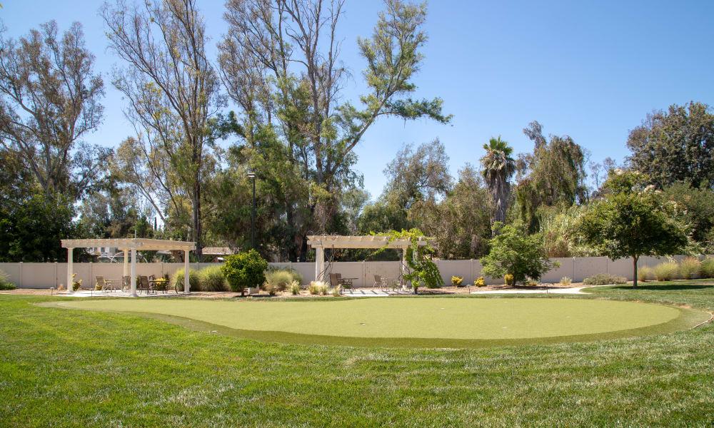Beautifully manicured putting green at Vista Gardens in Vista, California