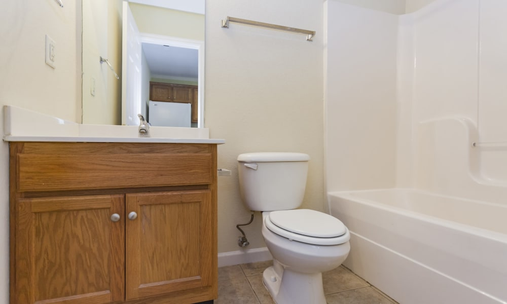 Bright bathroom at Home Place Apartments in Chattanooga, Tennessee