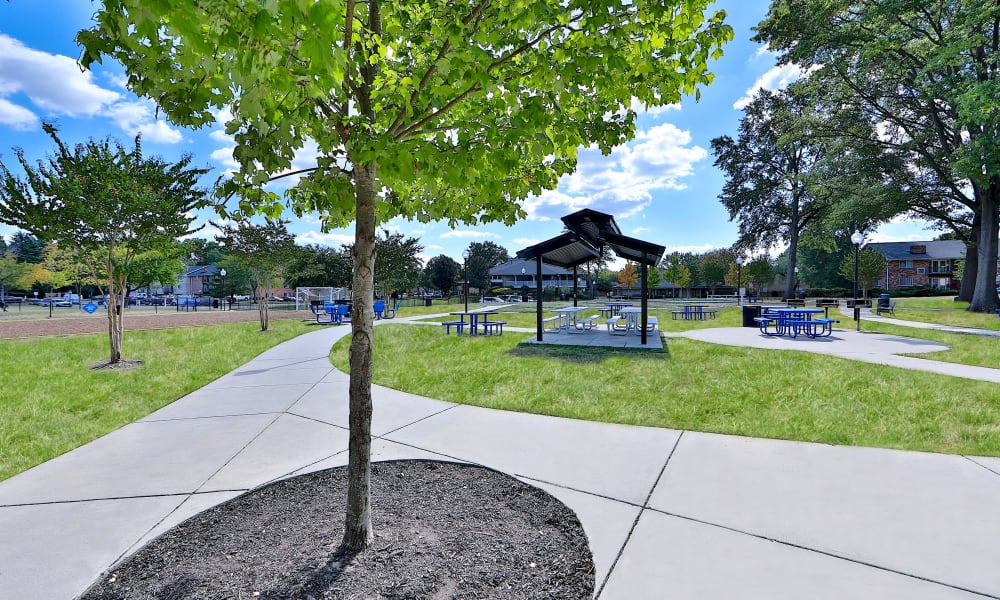 Community Grounds at Mount Vernon Square Apartments in Alexandria, Virginia