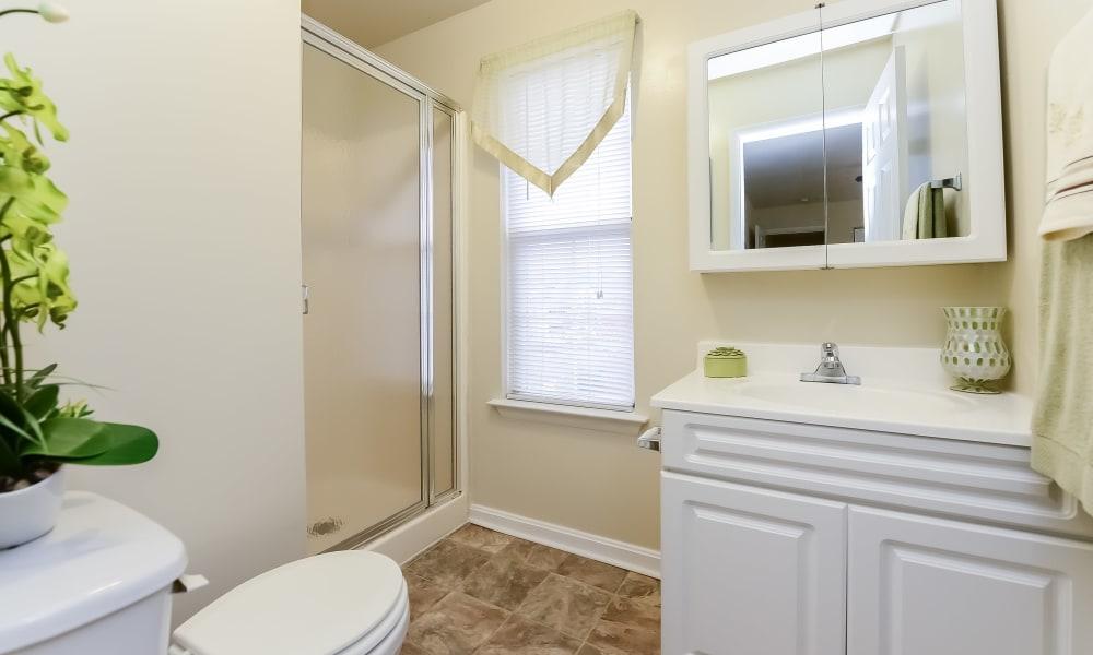 Bathroom at Fox Run Apartments & Townhomes in Bear, DE