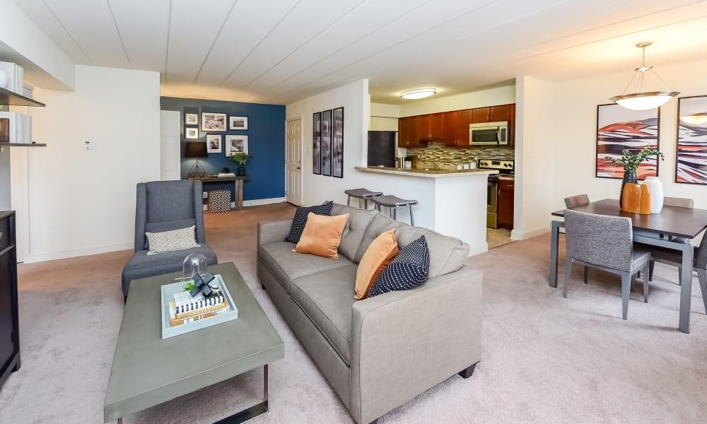 Beautiful Living Room at Apartments in Devon, Pennsylvania