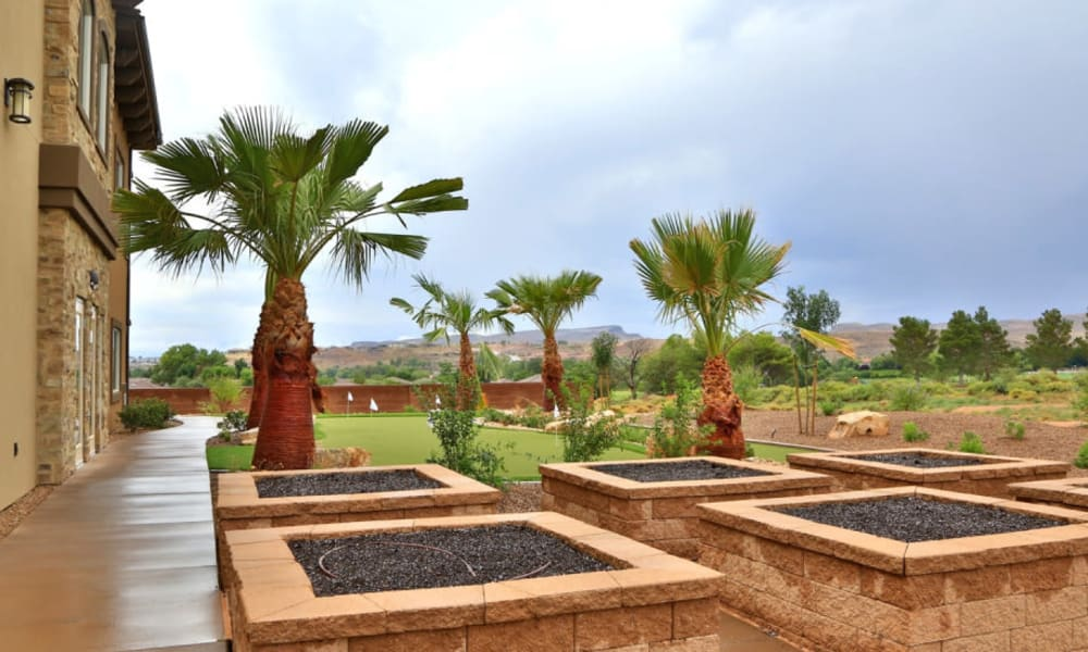 Palm trees outside of The Retreat at Sunbrook in St. George, Utah