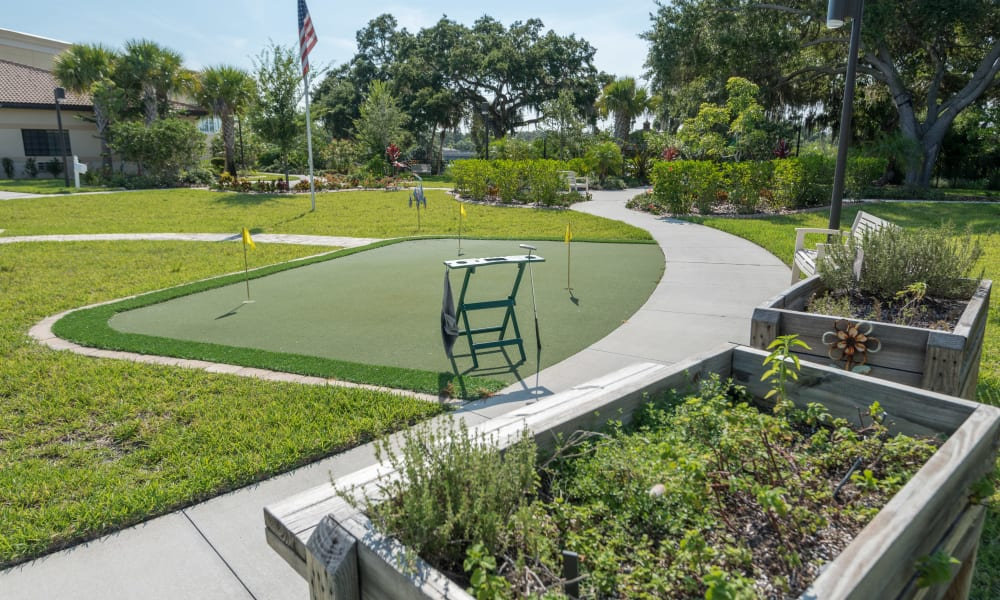 A small Putting green at Inspired Living Ivy Ridge in St Petersburg, Florida
