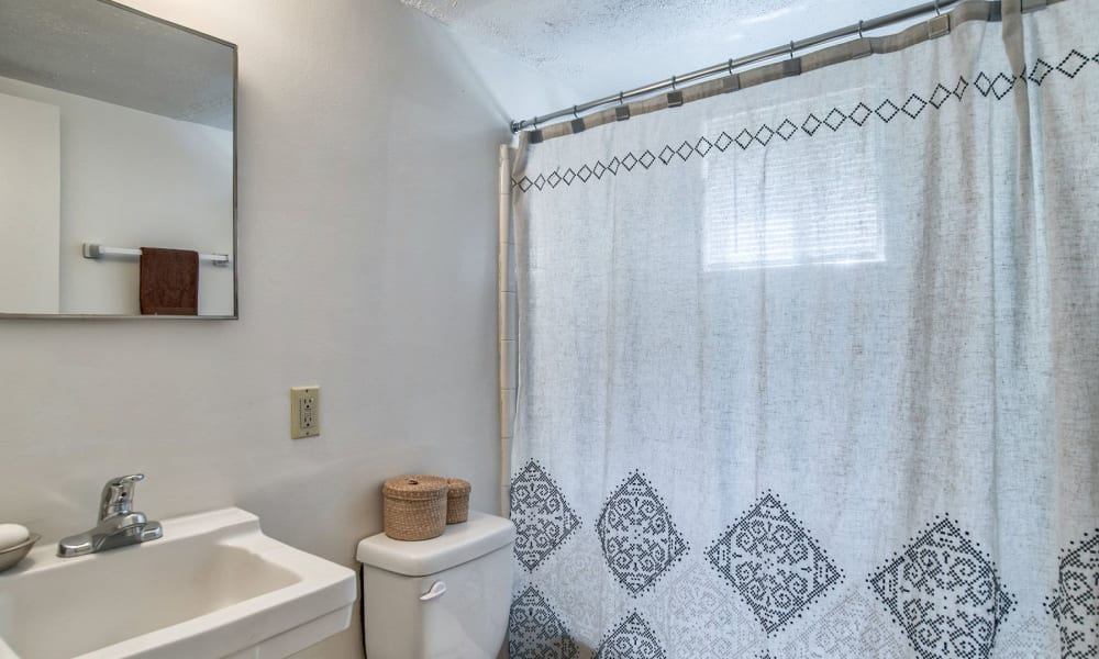 A decorated apartment bathroom at Carriage House Apartments in Smyrna, Georgia