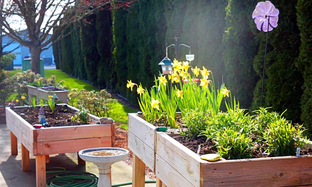 Outdoor Garden at Heron Pointe Senior Living in Monmouth, Oregon