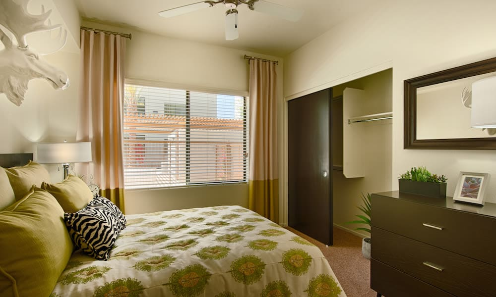 Well-furnished master bedroom with plush carpeting in a model home at Cactus Forty-2 in Phoenix, Arizona