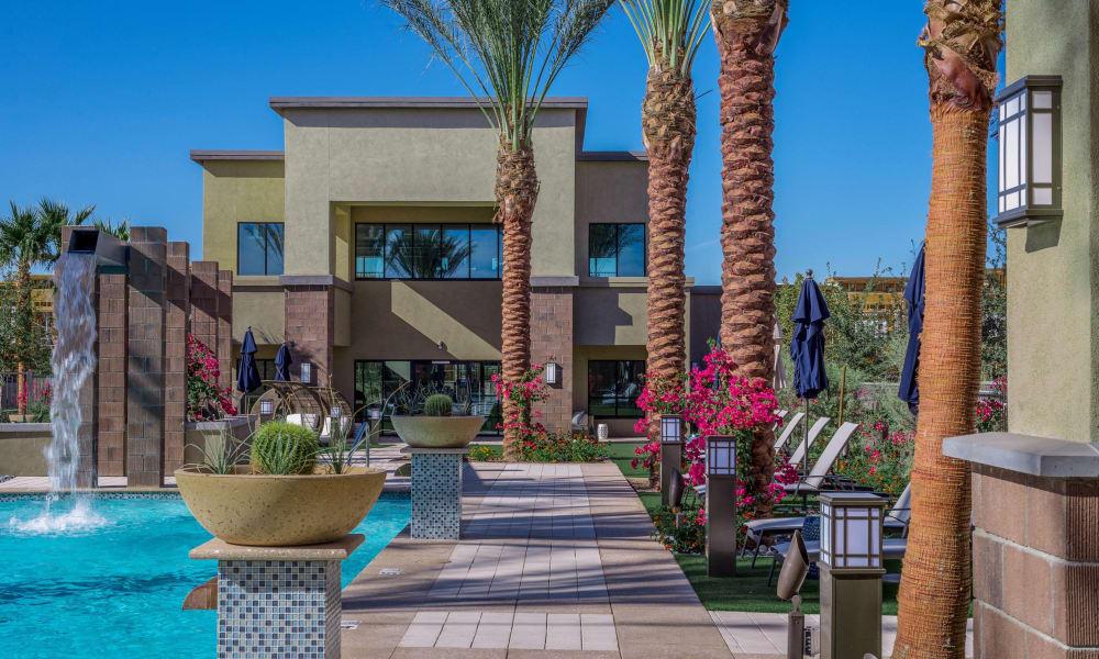 Beautiful swimming pool area at Cadia Crossing in Gilbert, Arizona