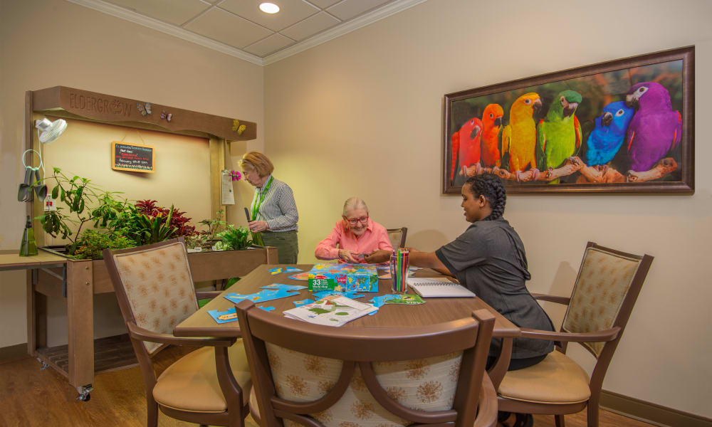 Eldergrow activity room at Quail Park Memory Care Residences of West Seattle in Seattle, Washington