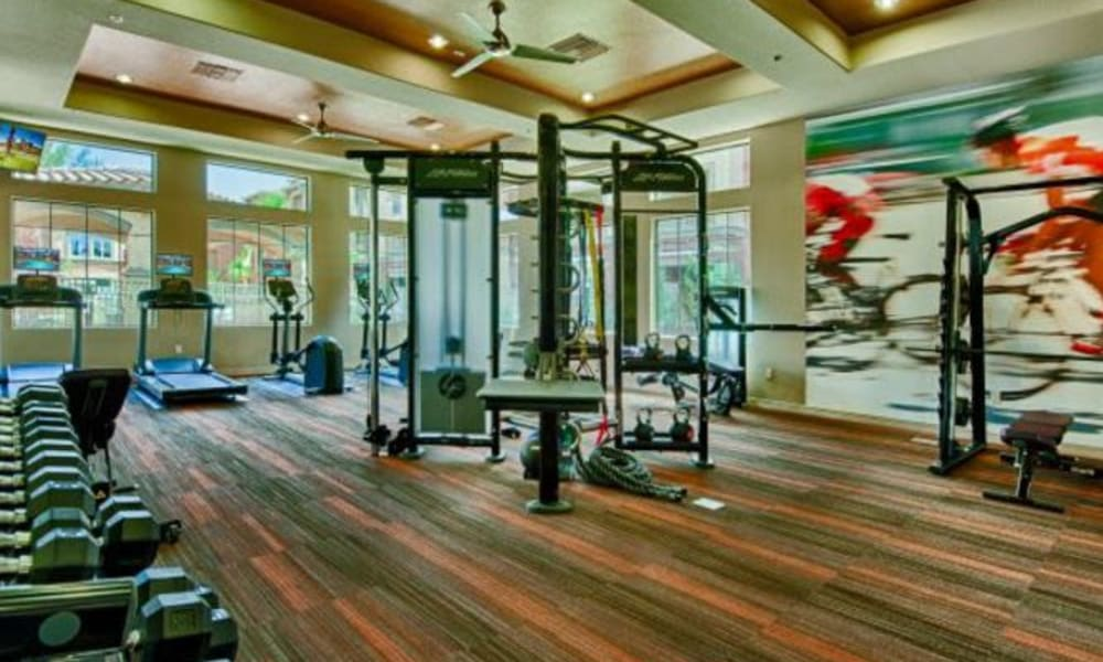 Free weights and more in the expansive fitness center at Elevation Chandler in Chandler, Arizona