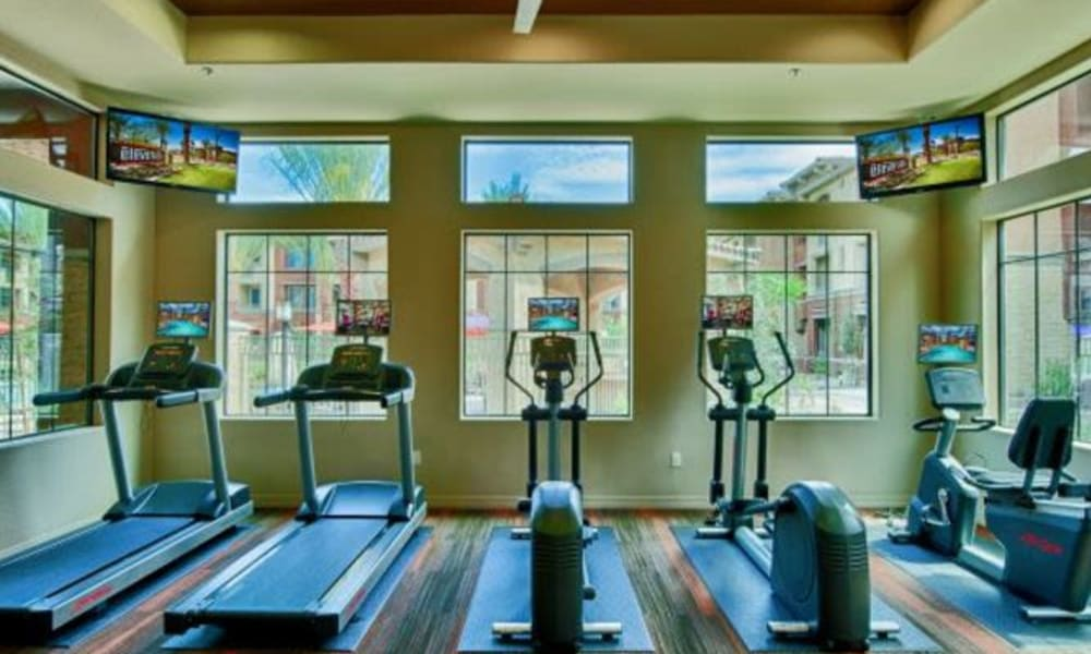 Treadmills and cardio machines in the fitness center at Elevation Chandler in Chandler, Arizona