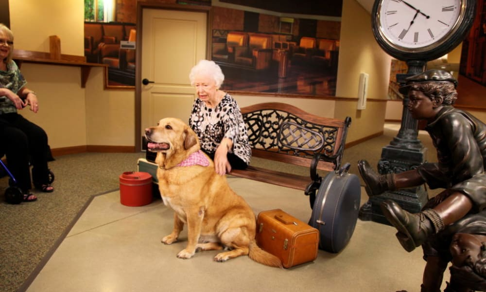 Resident sitting on a bench petting a large dog at Quail Park Memory Care Residences of Visalia in Visalia, California