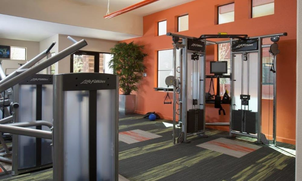 Plenty of exercise equipment to keep you in shape in the fitness center at Vive in Chandler, Arizona