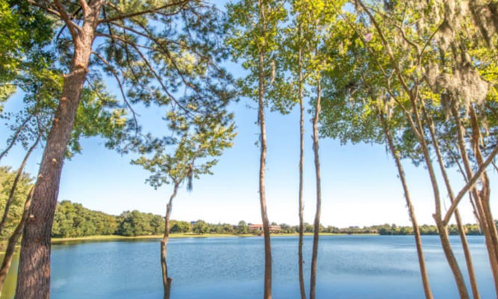 Beautiful day at the lake at Walden at Chatham Center in Savannah, Georgia