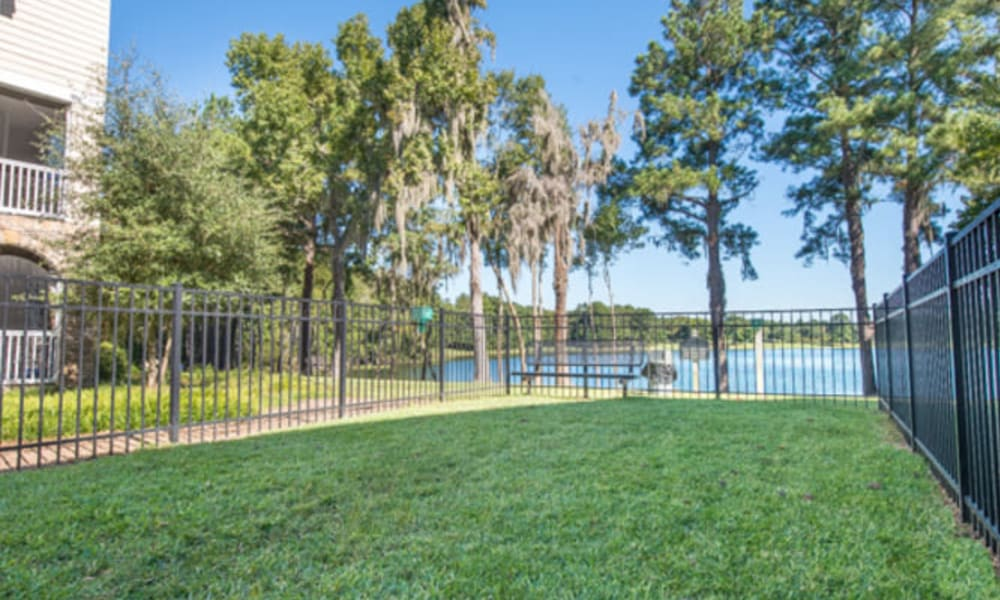 Expansive fenced area for your dog to run at the onsite dog park at Walden at Chatham Center in Savannah, Georgia