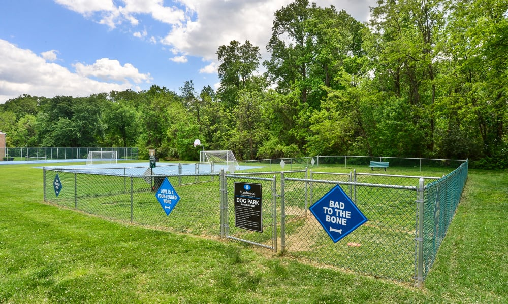 Dog park at Marchwood Apartment Homes