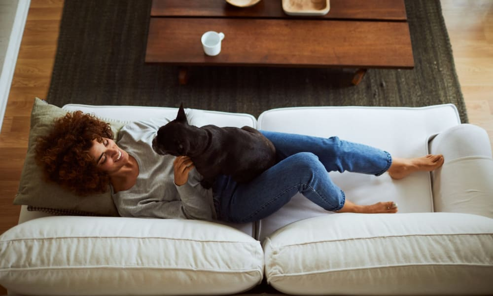 Pet friendly apartments at Persimmon Square Apartments in Oklahoma City, OK