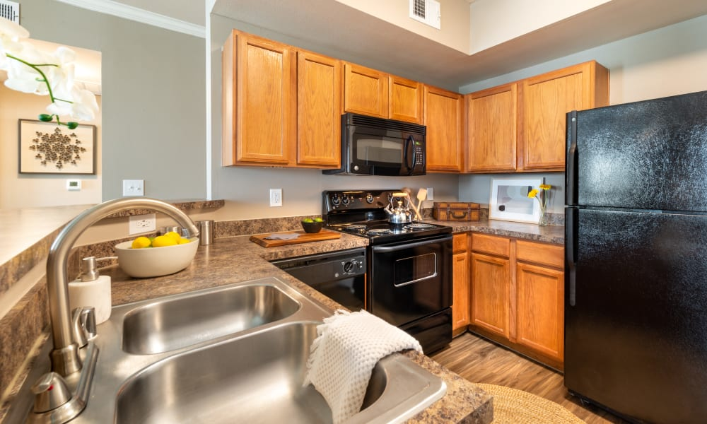 Kitchen featuring a double sink and modern black finished appliances at Olympus Team Ranch in Benbrook, Texas