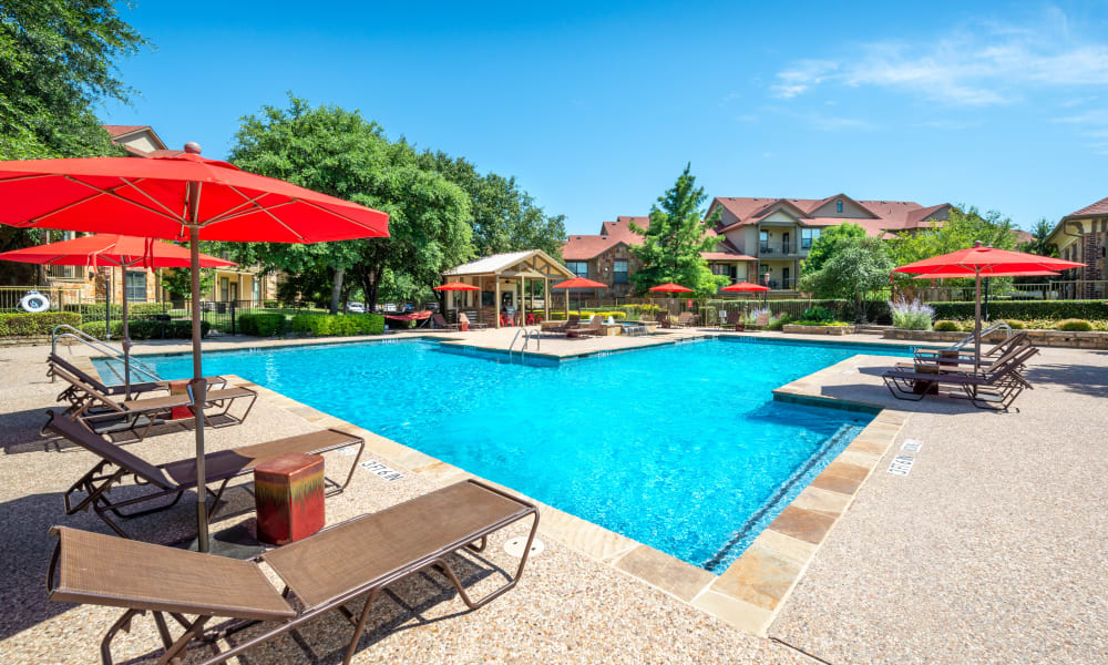 Swimming Pool at Olympus Team Ranch in Benbrook, Texas