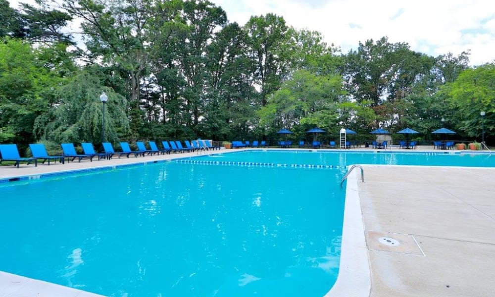 Pool at Brookdale at Mark Center Apartment Homes in Alexandria, Virginia