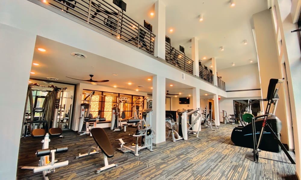 Fitness area at Fusion