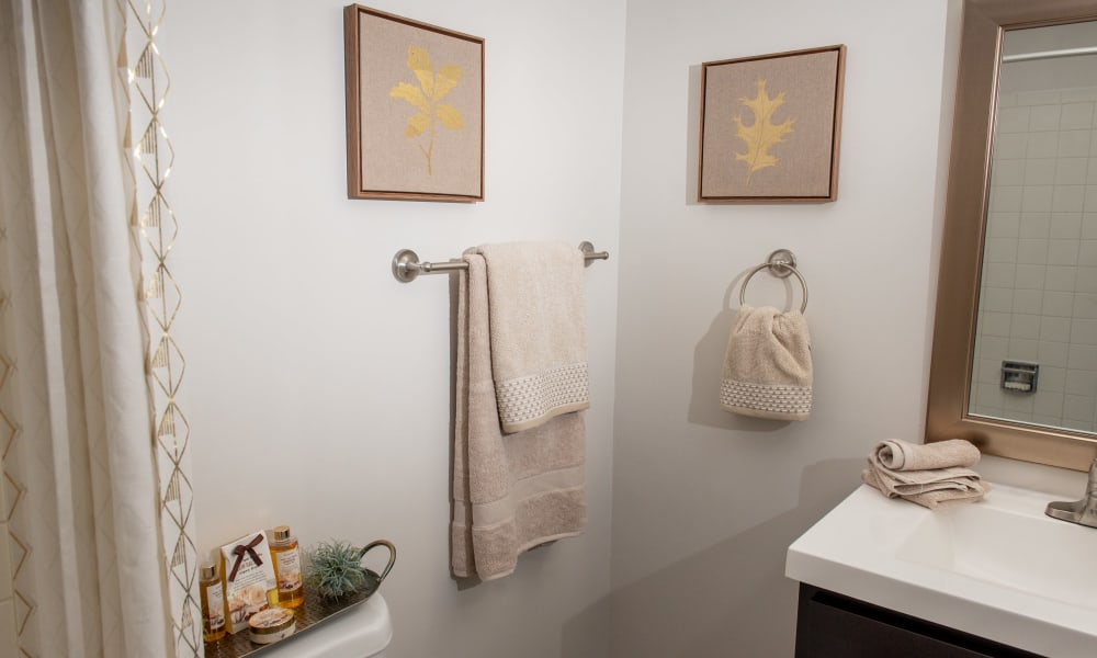 Clean bathroom at Mandalane Apartments in Wheeling, Illinois