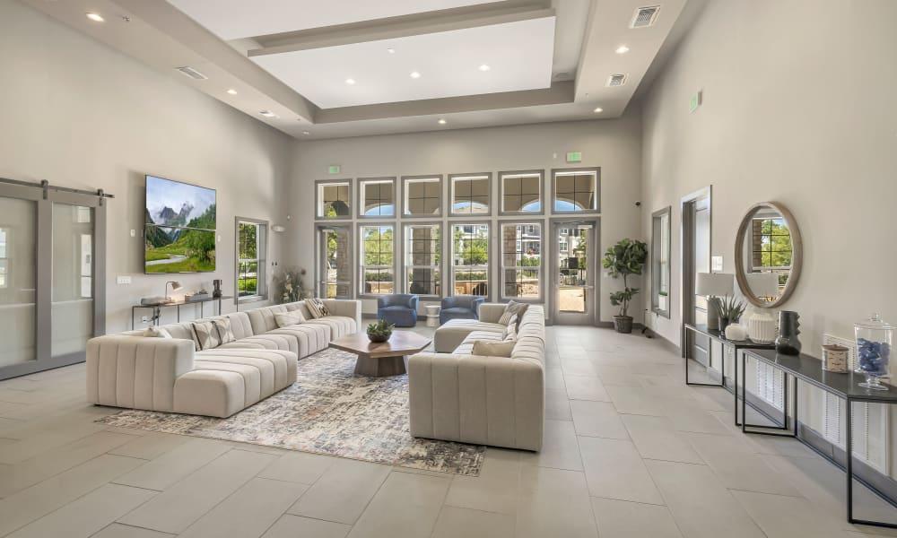 Resident Lounge |  Wiregrass at Stone Oak