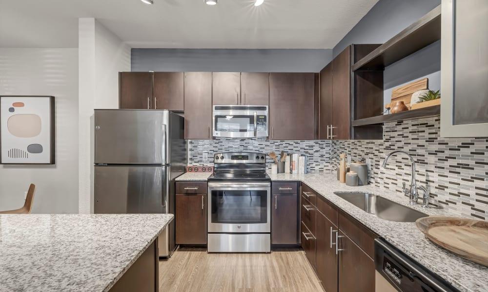 Apartment Kitchen  |  Wiregrass at Stone Oak