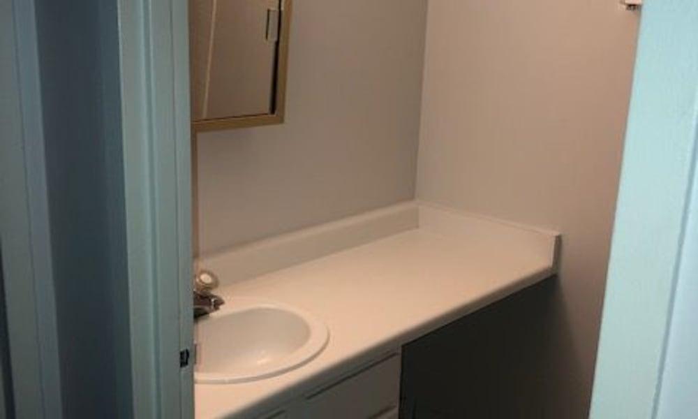 Sink at Mandalane Apartments in Wheeling, Illinois