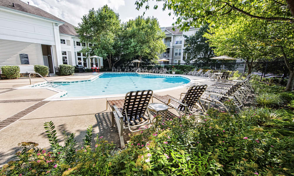 Mature trees around the swimming pool at Arbor Ridge Apartments in Owings Mills, Maryland