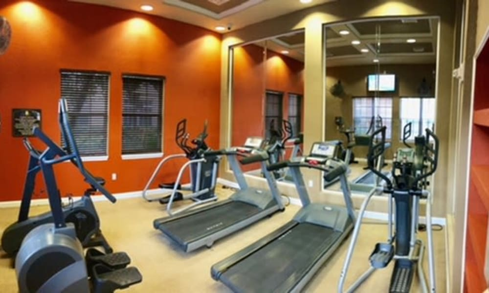 Fitness center at Camino Real Apartment Homes in Boca Raton, Florida