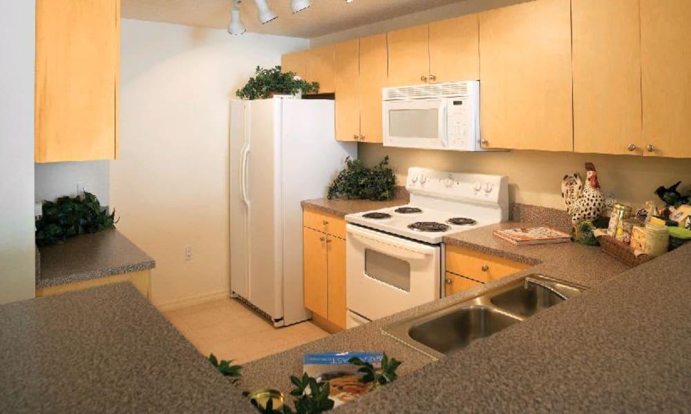 Kitchen at Camino Real Apartment Homes in Boca Raton, Florida
