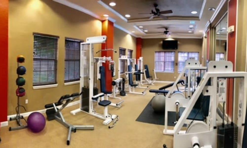 Gym at Camino Real Apartment Homes in Boca Raton, Florida