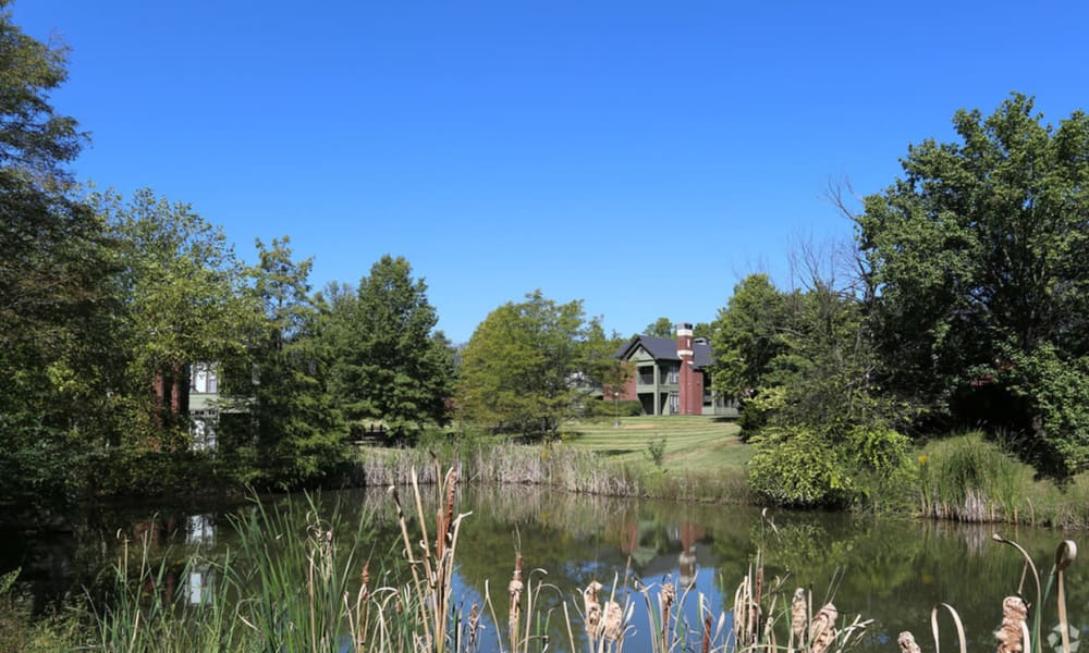 Pond at Century Lake Apartments in Cincinnati, Ohio