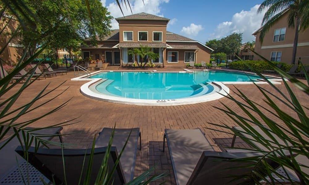 Swimming pool at Tuscany Pointe at Tampa Apartment Homes in Tampa, Florida