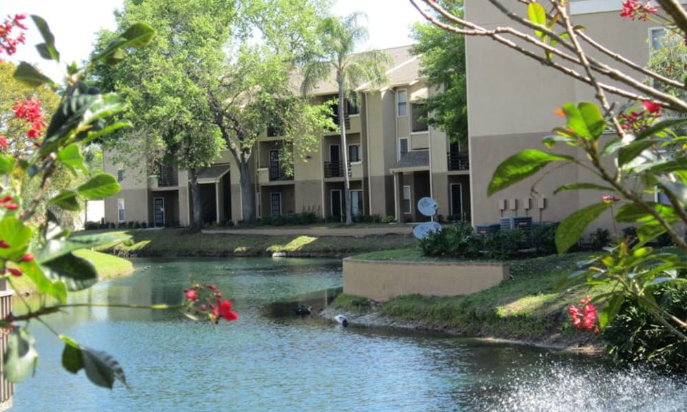 Beautiful view of the water from Tuscany Pointe at Tampa Apartment Homes in Tampa, Florida