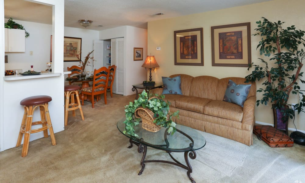 Living room at Pointe Sienna Apartment Homes in Jacksonville, Florida