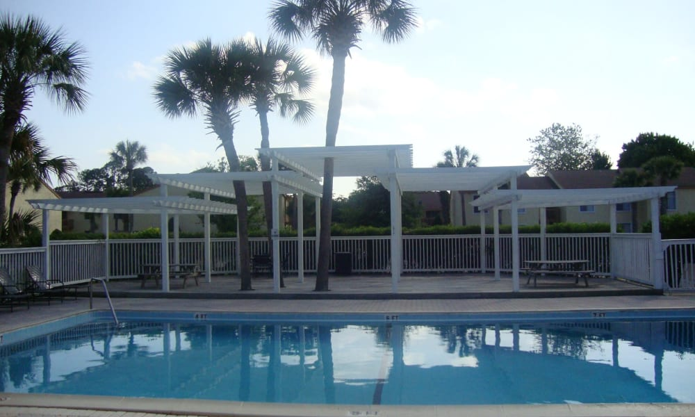 Sparkling pool at Pointe Sienna Apartment Homes in Jacksonville, Florida