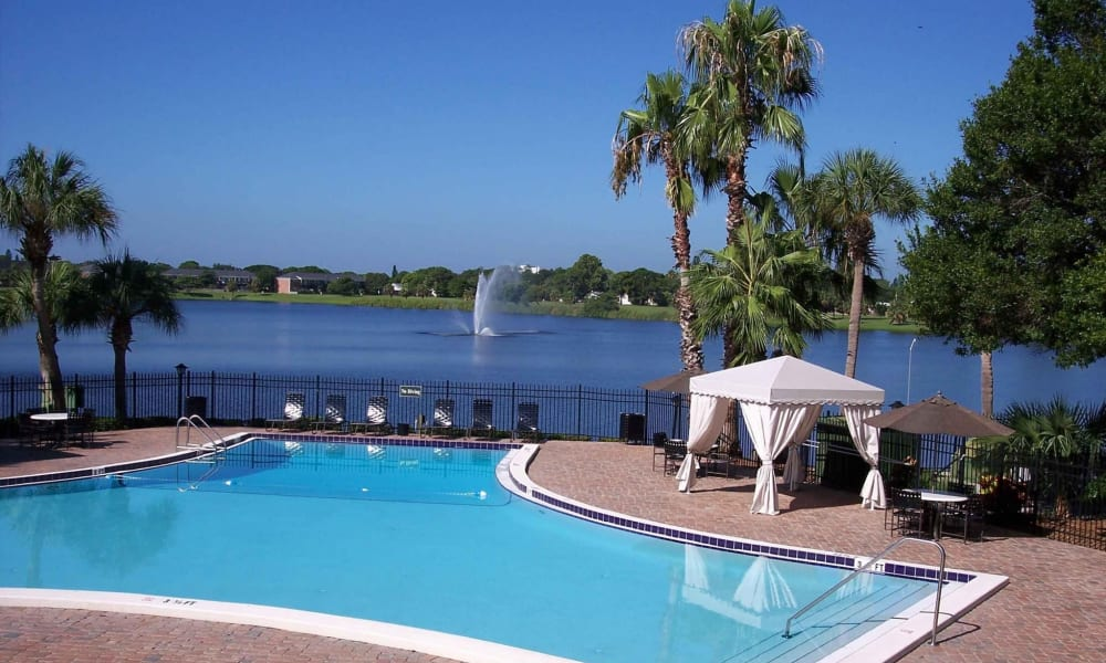 Sparkling pool at Reserve at Lake Pointe Apartments & Townhomes in St Petersburg, Florida