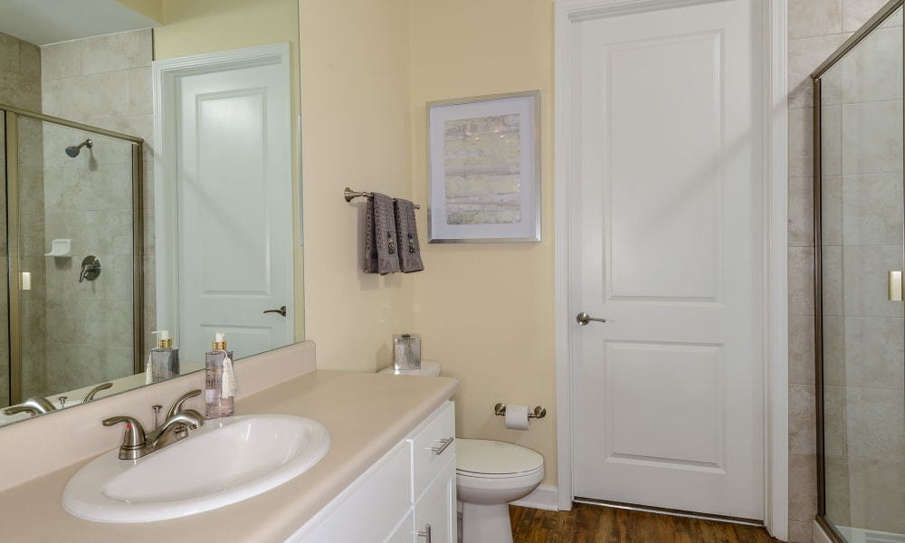 Sink and mirror in bathroom with hardwood style floors at Palm Bay Club in Jacksonville, Florida