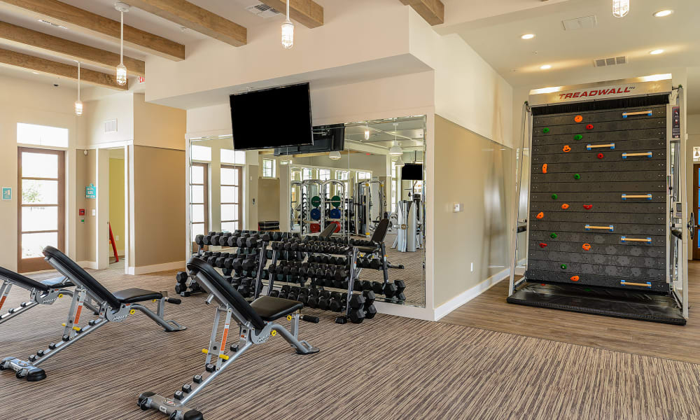 Amazing fitness area for residents to use at Palm Bay Club in Jacksonville, Florida