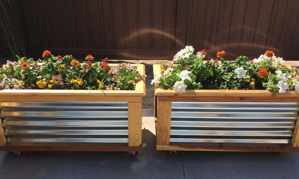 Planter boxes with lots of flowers at Aspen Valley Senior Living in Boise, Idaho