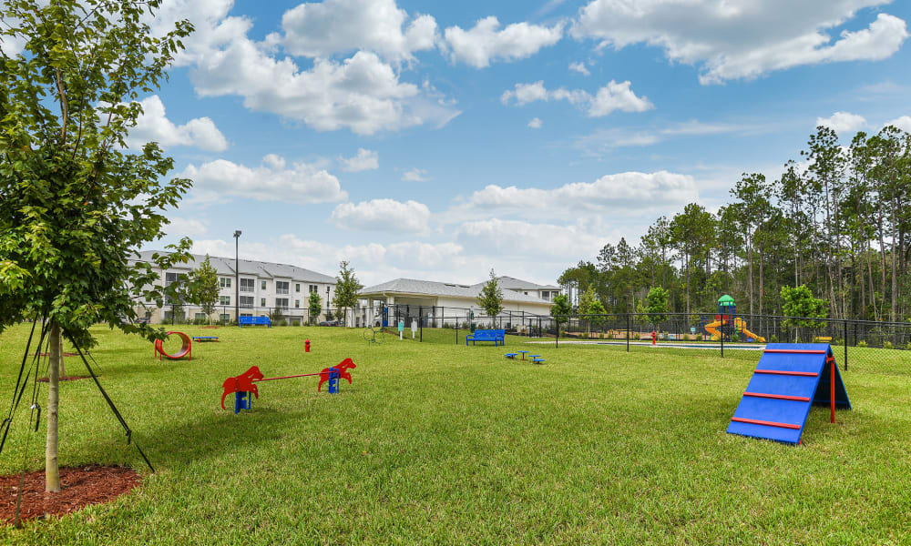 Expansive agility course at the onsite dog park at Palm Bay Club in Jacksonville, Florida