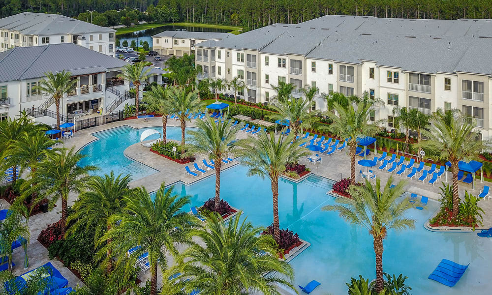 Low aerial view of the swimming pool area dotted with palm trees at Palm Bay Club in Jacksonville, Florida